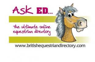 British Equestrian Trade Association - BETA for Service